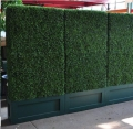 Rental store for HEDGES - 4 x 8  TALL GREEN   jf in Gulfport MS