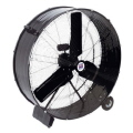 Rental store for FAN, SHOP 36  - BLACK in Gulfport MS
