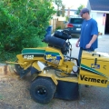 Rental store for STUMP GRINDER - HYDRAULIC in Gulfport MS